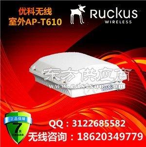 美国优科901-T610-WW01室外全向AP/Ruckus T610室外无线WiFi图片