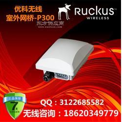 美国优科901-P300-WW02室外无线网桥AP/RuckusP300无线网桥/优科p300室外AP