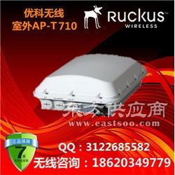 美国优科T710系列/优科901-T710-WW01室外全向AP/Ruckus T710图片