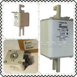 170M5446美国BUSSMANN熔断器 170M5447,170M5448图片