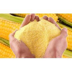 通化玉米面-乔氏玉米面-玉米面厂家直供图片