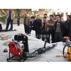 风力灭火机,风力灭火机,镇江正林(查看)图片