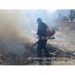 广东风力灭火机,镇江正林,风力灭火机图片
