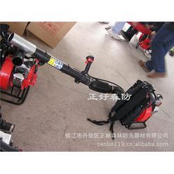 湖南风力灭火机,镇江正林(在线咨询),风力灭火机图片