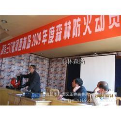 风力灭火机、风力灭火机生产、镇江正林图片