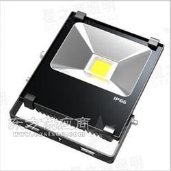 led投光灯XTG008图片