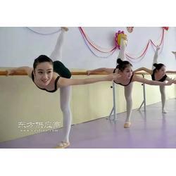 舞蹈专用把杆,压腿专用把杆,瑜伽专用把杆沧洲星杰专用生产图片