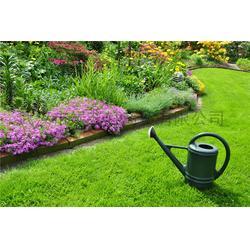 绿艺轩、室内人造草坪、硚口区人造草坪图片