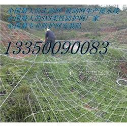 边坡防护网厂家,主动网边坡防护网图片