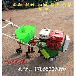 小型玉米播种机汽油播种机 多功能播种机图片