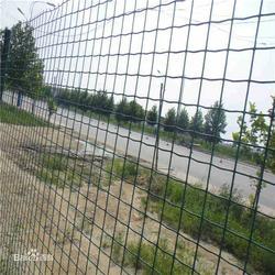 漳州养鸡护栏网_亿辛【批量生产】_养鸡护栏网生产商图片