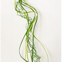 建邦化纤 人工草坪生产丝-胶州草坪丝图片
