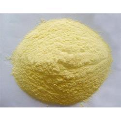 膨化玉米蛋白-新富莱膨化玉米蛋白-膨化玉米蛋白生产厂家图片