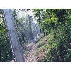 柔性边坡防护网 水电站被动网厂家 诚信商家主动网图片