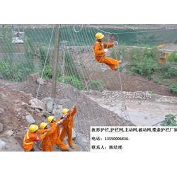 rxi100拦石网rxi-100环形防护网图片