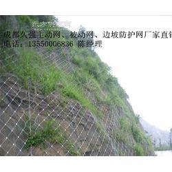 山体滑坡自然灾害柔性防护网图片