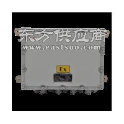 BXJ51系列防爆接线箱铝合金防爆接线箱增安型图片