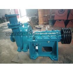 强能泵业_河源100DT-A50脱硫泵厂家图片