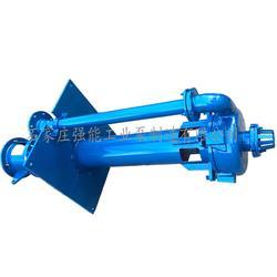 强能工业泵_上海ZJL液下泵_ZJL液下泵直销图片