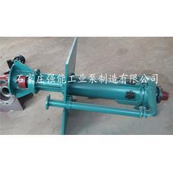 强能工业泵_湖北ZJL型液下渣浆泵_ZJL型液下渣浆泵图片
