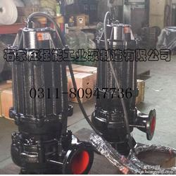 强能工业泵厂,五莲县WQ型潜污泵,WQ型潜污泵制造厂图片