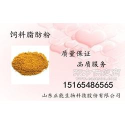 供应用于增加饲料营养促进畜禽生长提高的抗病能力的食品级饲料脂肪粉图片