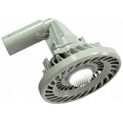 BAX1501D固态免维护防爆防腐灯 LED防爆灯 隔爆型防爆灯图片
