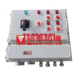 防爆动力控制配电柜图片