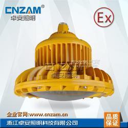 LED防爆灯 免维护LED防爆泛光灯,100W LED防爆灯图片