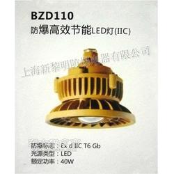 BZD110 防爆高效节能LED灯图片