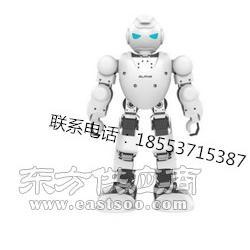 编程表演机器人早教机器人图片