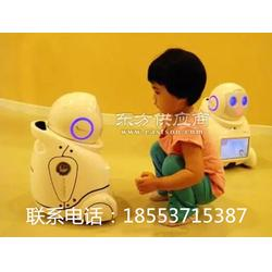 早教机器人小优机器人图片