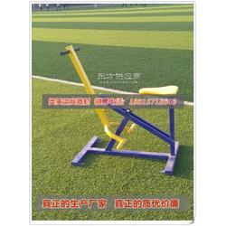 专业生产健身器材室外健身路径双人大转轮健身器材领导满意图片