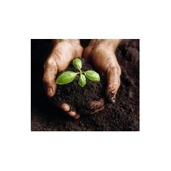 肥料常规检测项目有哪些图片