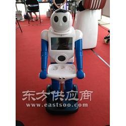 智能旺仔家居服务机器人、陪伴机器人图片
