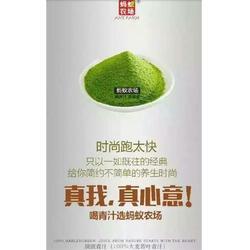 蚂蚁农场青汁卖的好吗,浦东新区蚂蚁农场,临沂云熙(查看)图片