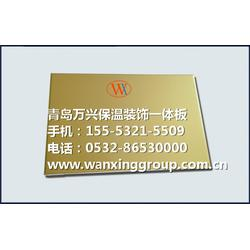 WX复合装饰一体板(图)|菏泽节能复合装饰一体板|一体板图片