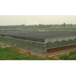 富农棚业 红河蔬菜大棚厂家-红河蔬菜大棚图片