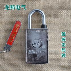 供应 磁感密码锁电表箱锁图片