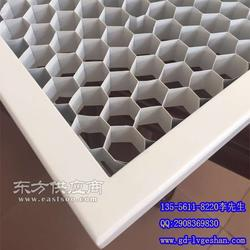 吊顶天花铝网板厂家 六角孔形拉网板图片