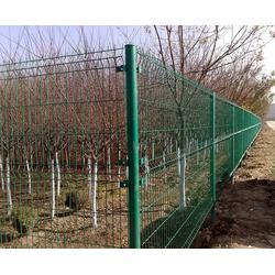 宿州护栏网生产安装、运动场围栏网、宿州护栏网图片