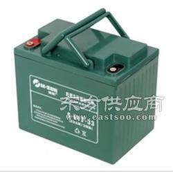 观光车蓄电池 观光车蓄电池 振威供图片