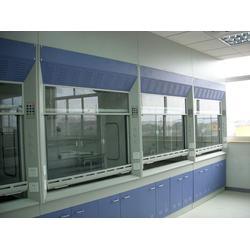 镇江通风柜-落地型通风柜-福莱尔实验室设备(推荐商家)图片
