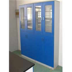 药品柜-福莱尔实验室设备(在线咨询)-金华药品柜图片