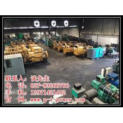 进口发电机-武汉进口发电机租赁-江夏进口发电机图片