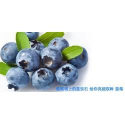 兒童吃好眼力藍莓葉黃素、葉黃素、好眼力視光科技圖片