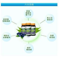 郑州好眼力蓝莓叶黄素咀嚼片-叶黄素-好眼力视光科技图片