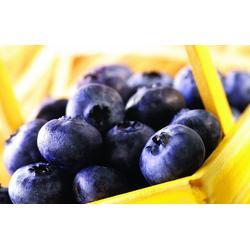 好眼力,好眼力蓝莓叶黄素 视疲劳,好眼力视光科技图片