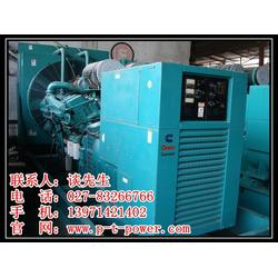 武汉发电机出租、大型发电机出租、青菱发电机图片