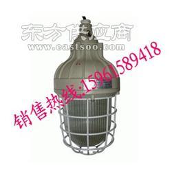HRD81防爆紧凑型节能灯防爆节能灯 存储仓库防爆灯图片